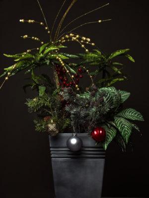 Proposition d'alternative au sapin classique ici avec une plante verte