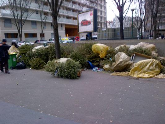 Photo d'un amas de sapins abandonnés dans la rue aprés les fetes